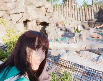 东武动物园将举办企鹅解说互动呼噜噜声优将解说沉迷呼噜噜的小紫