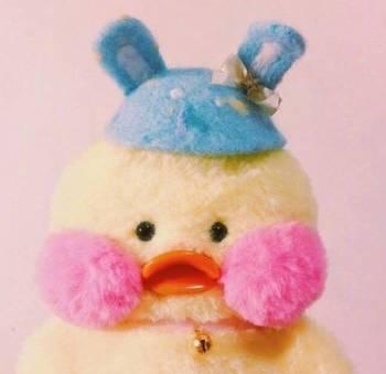这个小鸭子相当的可爱
