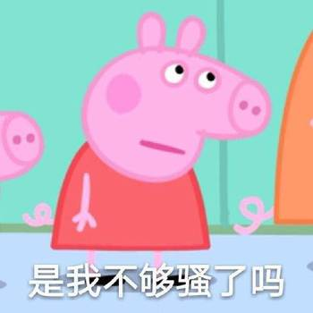 小猪导航使用步骤图