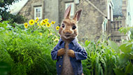 《比得兔》萌动来袭