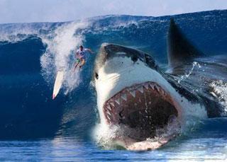 """《巨齿鲨》""""深海降临""""版定档预告片"""