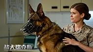 《战犬瑞克斯》定档预告