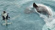 《巨齿鲨》深海斗兽席卷全球