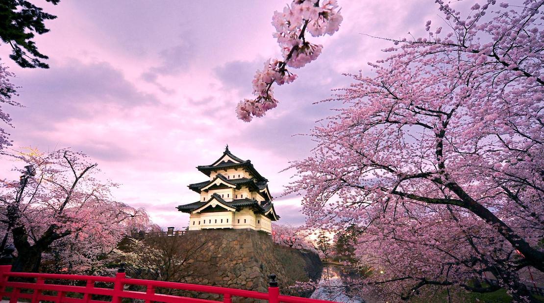为什么日本性开放了,但生育率却一再降低?