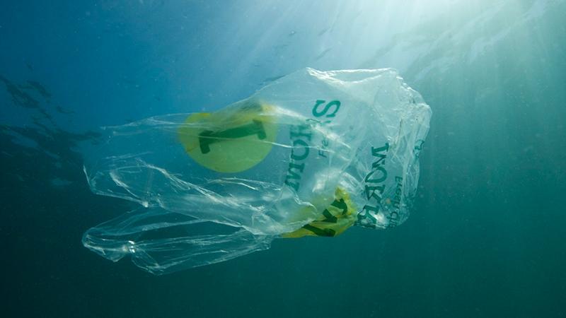 塑料袋装食品有什么危害?的头图