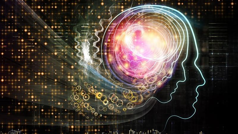 """科学家谈大脑时,大多在谈""""柯林""""的大脑?"""