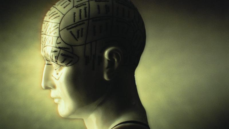 """脑子""""不完整""""会让人变傻吗?"""