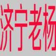 网站seo推广方案_SEO基础知识什么是网站索引量