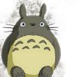 贵阳seo_网络工程师必须掌握的知识有哪些?
